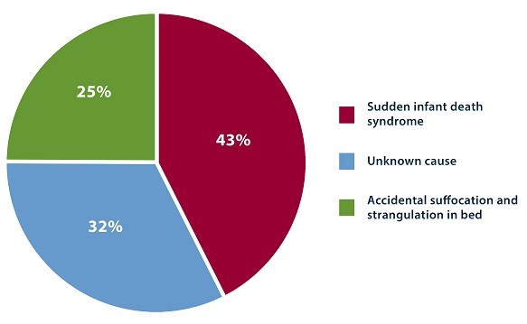 Breakdown of sudden infant death by cause